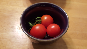 tomato still life small